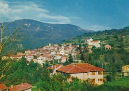 SALOGNI-FABBRICA CURONE (ALESSANDRIA)  -F/G   COLORE (190919) - Italia