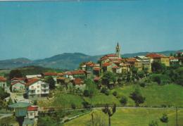 BOSSOLASCO (CUNEO)  -F/G   COLORE (190919) - Italia