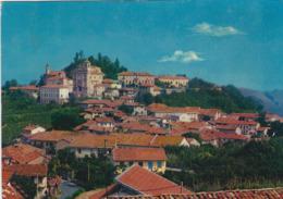 CASTAGNITO (CUNEO)  -F/G   COLORE (190919) - Italia