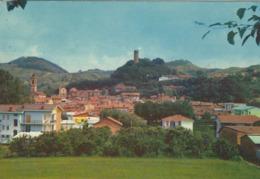 CORNELIANO D'ALBA (CUNEO)  -F/G   COLORE (190919) - Italia