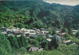 VIOZENE -ORMEA (CUNEO)  -F/G   COLORE (190919) - Italia