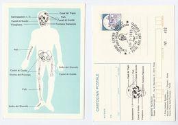 1985 TORINO Archaeology PREHISTORIC SKULL, ANATOMY Of 1ST INHABITANTS EUROPE Postal STATIONERY CARD Cover Italy Stamps - Prehistory