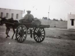 Wilaya D'Ouargla 1930 TRANSPORT SACS POSTAUX A LA GARE Photographie Photos Photo Originale PTT -LA  POSTE A CHARRETTE - Métiers