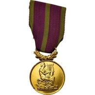 France, Sociétés Musicales Et Chorales, Médaille, Excellent Quality - Altri