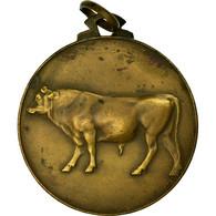 Belgique, Médaille, Agriculture, Fédération Des Syndicats D'Elevage, Couvin - Other