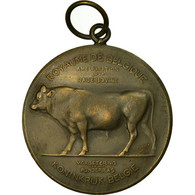 Belgique, Médaille, Agriculture, Amélioration De La Race Bovine, Namur - Other