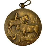 Belgique, Médaille, Agriculture, Comice Agricole De Couvin, 1936, TTB+, Bronze - Other