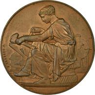 France, Médaille, Association Des Industriels Du Nord Contre Les Accidents - Autres