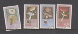 South Africa-Ciskei Scott 127-130 1988 Poisonous Mushrooms,mint Never Hinged - Ciskei