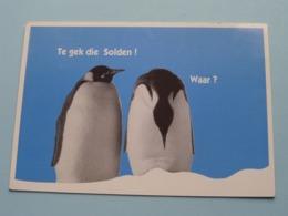 HARLEKIJN Markt 13 Te 2940 HOEVENEN > Solden ( Hobo-Faam Publi ) Anno 19?? ( See / Voir Photo ) ! - Stabroek