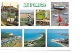 85 L'ILE D'OLERON Cpm Multivues - Francia