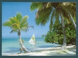 Discovery Of An Isolated Beach At Moorea - Tahiti