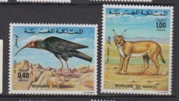 MAROC-1975-N°736/737** FAUNE - Maroc (1956-...)