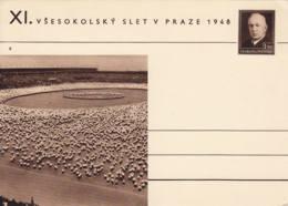 TCHECOSLOVAQUIE -  Entier Postal Neuf - Sokol De Pragues En 1948 - Ganzsachen