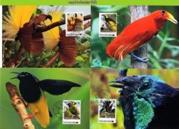 Nfd12mb FAUNA PARADIJSVOGELS PARADISE BIRDS VÖGEL AVES OISEAUX PAPUA NEW GUINEA 2013 MAX - Oiseaux