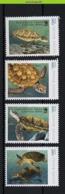 Nfd13s FAUNA REPTIELEN SCHILDPAD REPTILES TURTLE SCHILDKRÖTEN GUINÉ0BISSAU 2013 PF/MNH - Schildpadden