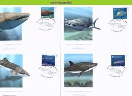 Nfd14fb FAUNA 'VISSEN FISH FISCHE' WALVISHAAI WHALE SHARK HAIE MARINE LIFE GUINÉ0BISSAU 2013 FDC's - Maritiem Leven