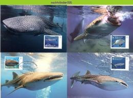 Nfd14mb FAUNA 'VISSEN FISH FISCHE' WALVISHAAI WHALE SHARK HAIE MARINE LIFE GUINÉ0BISSAU 2013 MAX - Maritiem Leven