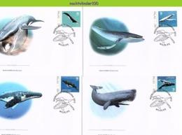 Nfd04fb FAUNA ZEEZOOGDIEREN WALVIS WHALE SEA MAMMALS BALEINES MARINE LIFE PALAU 2012 FDC's - Wale