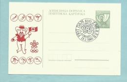 Entier Postal Jeux Olympiques De Séoul - Zagreb Ex Yougoslavie - Croatie 1988 Mascotte Tigre Olimpijske Zimske Calgary - Sommer 1988: Seoul