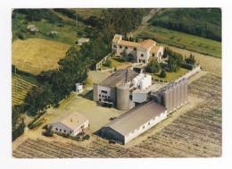 Haute Corse GHISONACCIA Domaine Vinicole De SPERGOLATU Les Citernes Mr Duriani Saint Antoine VOIR DOS - Francia