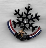 Pin's, Broche Tricolore, Ville, Sport  SKI,  E.S.F  1  étoile  Or  Verso  A . AUGIS  LYON - Sports D'hiver