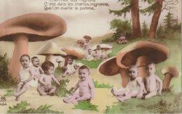 Bebe  Sous Les Champignons Cherchez Vos Mignons C'est Dans .  .  .  .      Babies Under The Mushrooms - Babies