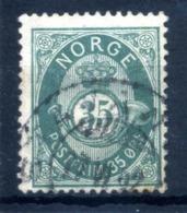 1877 NORVEGIA N.29 USATO - Norvegia