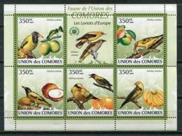Comores Islands 2009 Comoros / Birds MNH Vögel Aves Oiseaux / Cu6812  36-62 - Unclassified