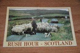 12139-     RUSH HOUR, SCOTLAND - Scotland