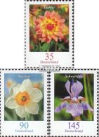 BRD 2505-2507 (kompl.Ausg.) Postfrisch 2006 Blumen - BRD