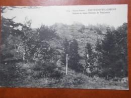Carte Postale  - HARTMANNSWILLERKOFF (68) - Ruines Du Vieux Château De Frendstein (3524) - Frankreich