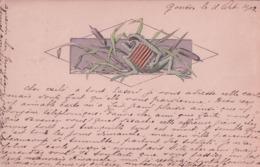 Grenouille Jouant De L'Accordéon, Litho Gaufrée (11.10.1902) - Künstlerkarten