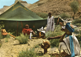 MAURITANIE La Vie Sous La Tente - Mauritania