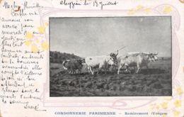 88-REMIREMONT-N°T2519-E/0353 - Remiremont