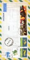 BRESIL. N°1925-6 De 1989 Enveloppe Ayant Circulé à Destination De Hanau. Avion/ULM/Tour Eiffel. - Aviones