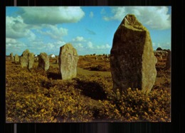 CARNAC ALIGNEMENT DE KERMARIO - Dolmen & Menhirs