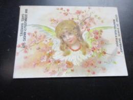 Chromo,Van Leckwijck & Co, Anvers Cafes Torrefies - Trade Cards