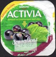 "Opercule Cover Yaourt Yogurt "" Danone "" ACTIVIA Sensations Cassis Yoghurt Yoghourt Yahourt Yogourt Limited Edition - Opercules De Lait"