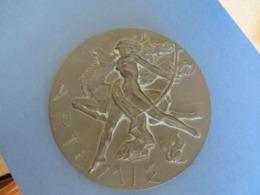 MEDAILLE ANCIENNE BRONZE , Delamarre,diametre 11/12cm , Pése 628 Grammes - France