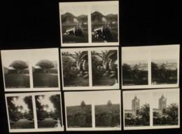 Tenerife SPAIN Espagne * 7 STEREOVIEWS - Photos Stéréoscopiques