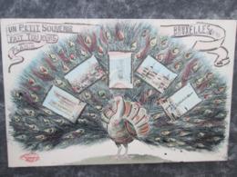 Bruxelles Superbe Carte  Souvenir Avec Un Paon . Rare - Altri
