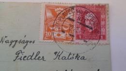 D168192 Czechoslovakia  Postcard Dog Chien   - TPO -Railway Post  BAHNPOST - Orlov-Plaveč Nad Popradom-Kosice Ca 1927 - Briefe U. Dokumente