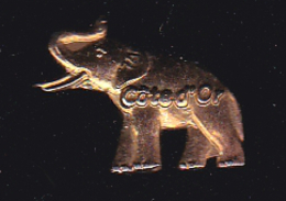 60052-Pin's.Chocolat Cote D Or.elephant.. - Animaux