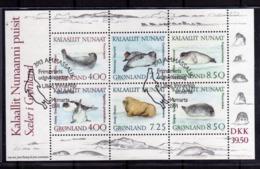 GREENLAND GRONLANDS GROENLANDIA GRØNLAND 1996 SEA FAUNA SEALS FOCHE BLOCK SHEET BLOCCO FOGLIETTO FIRST DAY CANCEL FDC - Blocks & Sheetlets