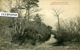 CPA -  SAINT-BONNET-LE-FROID - COL DE LA LUERE - UN COIN DU BOIS - Otros Municipios