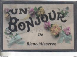 Carte Postale 59. Blanc Misseron  Très Beau Plan - France