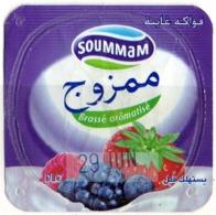 """Opercule Cover Yaourt Yogurt """" Soummam """" MAMZOUDJ Fruits De Bois Yoghurt Yoghourt Yahourt Yogourt - Koffiemelk-bekertjes"""