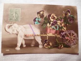 Cpa Fantaisie Elephant En Biscuit Chariot De Fleur Pensée Postcard Flower Pansy Carte Postale Ancienne Ancien - Éléphants