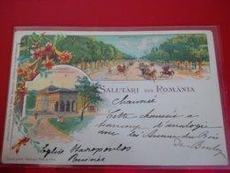 SALUTARI DIN ROMANIA - Roumanie